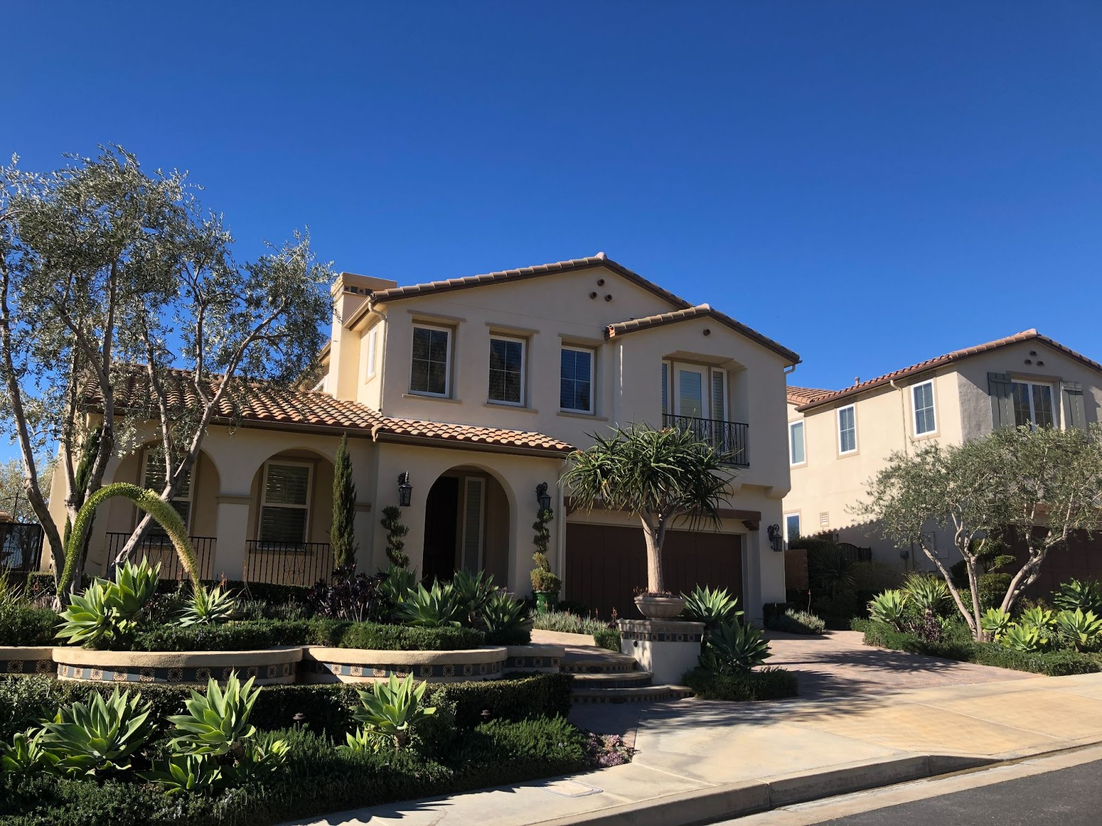 proper plant placement in landscaping in front of a southern California home